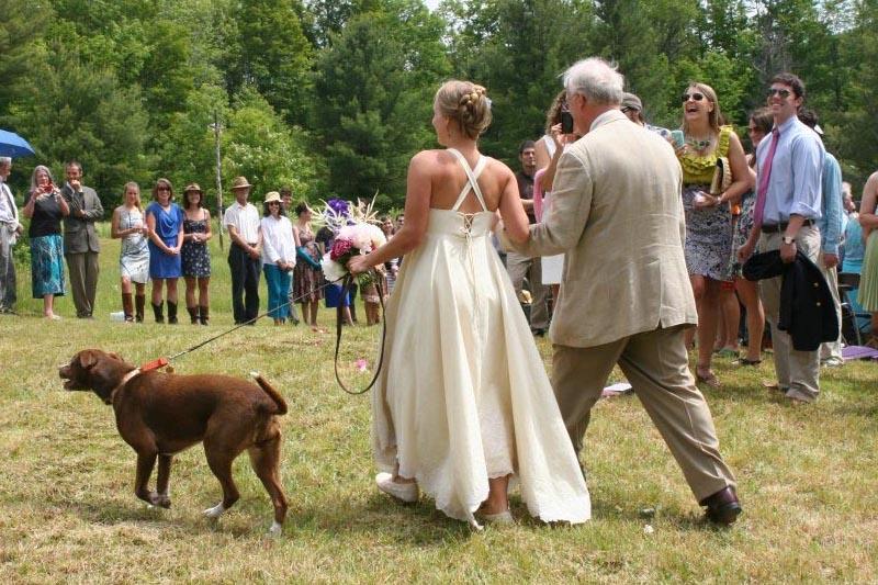 maternity wedding dress, hemp wedding dress, organic cotton wedding dress