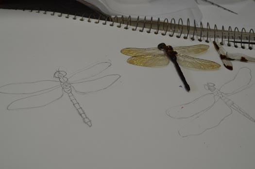 Dragonfly wearable art by Tara Lynn